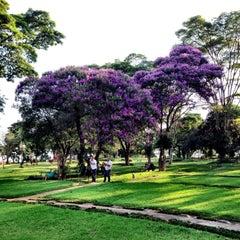 Photo taken at Cemitério da Paz by Hubert A. on 1/31/2014