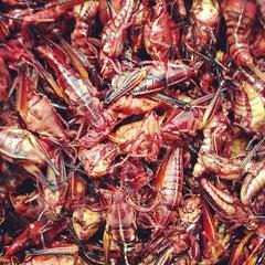 Photo taken at Mercado de Atlixco by Pplucho B. on 10/3/2012