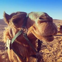 Photo taken at Bedouin Campsite by Felipe B. on 6/25/2013