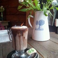 Photo taken at Café del Jardín by Yovi T. on 7/14/2013
