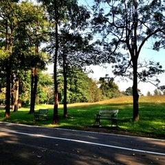 รูปภาพถ่ายที่ สวนวชิรเบญจทัศ (สวนรถไฟ) Vachirabenjatas Park (Rot Fai Park) โดย Honey K. เมื่อ 12/20/2012