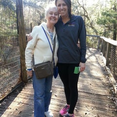 Photo taken at Tallahassee Museum by Christopher B. on 1/7/2015