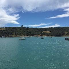 Photo taken at Waiheke Island by Giannina C. on 2/27/2015