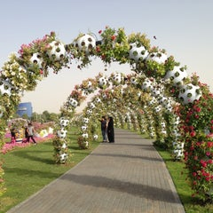 Photo taken at Dubai Miracle Garden by Yanis V. on 5/9/2013