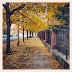 Photo taken at Bucktown by ciara s. on 10/24/2012