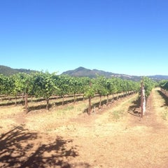 Photo taken at St. Francis Winery & Vineyards by Jackie on 6/28/2014