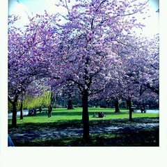 Photo taken at Ravenscourt Park by Kamila P. on 4/16/2013