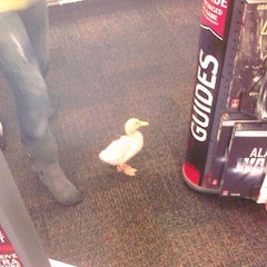 Photo taken at GameStop by Ashley F. on 10/9/2013