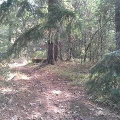Photo taken at Camas Valley by Mysi on 8/24/2013