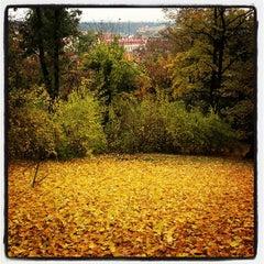 Photo taken at Petřínské zahrady | Petřín Gardens by Сергей Л. on 10/30/2012