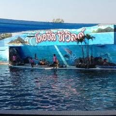 Photo taken at Oasis Sea World (โอเอซิส ซีเวิลด์) by Lady' BuM on 1/20/2013