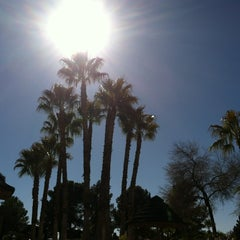 Photo taken at Oasis RV Resort by Jessica P. on 2/15/2013