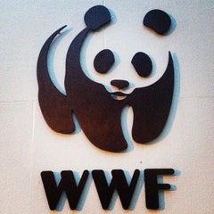 Photo taken at World Wildlife Fund by NtotheBEZ on 9/12/2013