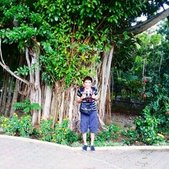 Photo taken at Maria Clara Lobregat Park by Tim C. on 1/27/2013