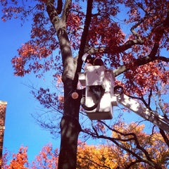 Photo taken at Locust Walk by Zeke on 11/14/2012