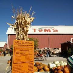 Photo taken at Tom's Farm Market & Greenhouses by David Z. on 10/12/2014