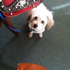 Photo taken at Lion's Peak Tasting Room by veronica k. on 11/14/2012