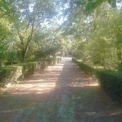 Photo taken at Parque Municipal Las Albercas by Daniel M. on 9/15/2012