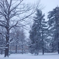 Photo taken at Cheesman Park by Casey D. on 4/23/2013