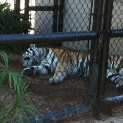 Photo taken at LSU - Student Union by Eve O. on 10/25/2012