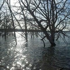 Photo taken at Lake Georgetown by Jodie C. on 2/23/2014