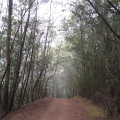 Photo taken at Joaquin Miller Park by Kelly W. on 9/21/2014