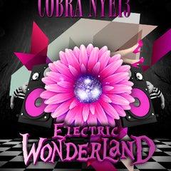 Photo taken at Cobra Nightclub by KickTickets on 12/20/2012