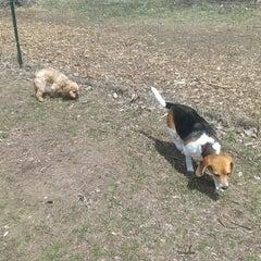 Photo taken at Wag Farms Dog Park by Cori O. on 4/28/2013