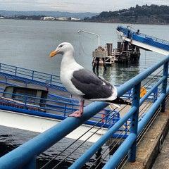 Photo taken at Ferry Landing by Desmond N. on 3/9/2014