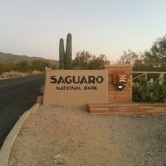 Photo taken at Saguaro National Park by Kelly P. on 11/5/2012