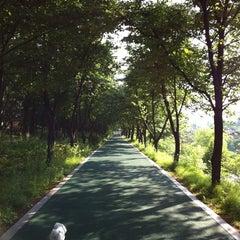 Photo taken at 양재천 산책로 (Yangjaecheon Trails) by Yaejin K. on 5/23/2012