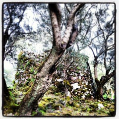Photo taken at Parco Archeologico di Santa Cristina by Pinni on 4/22/2012