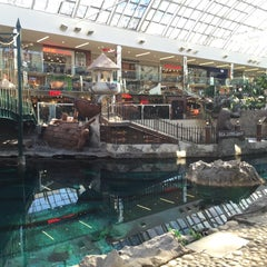 Photo taken at West Edmonton Mall by Mark M. on 5/22/2015