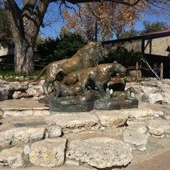 Photo taken at San Antonio Zoo by Mark S. on 1/22/2013