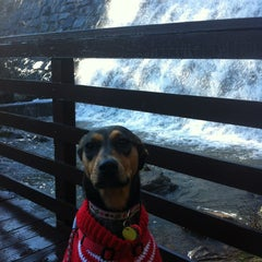 Photo taken at Paris Mountain State Park by Becky M. on 1/19/2013