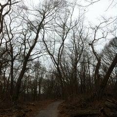 Photo taken at Van Cortlandt Park by Joyce S. on 2/1/2013