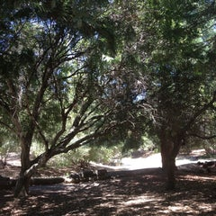 Photo taken at Joaquin Miller Park by Amy G. on 6/12/2013