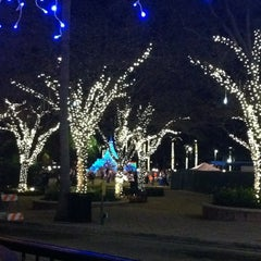 Photo taken at Clematis by Night by Lessonaya R. on 12/14/2012