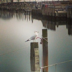 Photo taken at West Bay Park by Rich G. on 11/29/2014