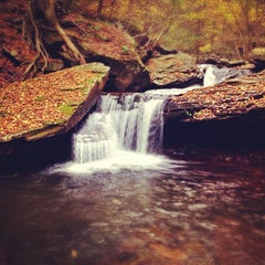 Photo taken at Ricketts Glen State Park by Aaron C. on 10/29/2012