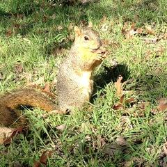Photo taken at San Antonio Botanical Garden by James M. on 1/17/2013