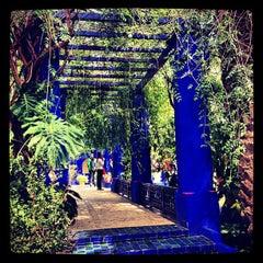 Photo taken at Jardin de Majorelle   حديقة ماجوريل by Salim L. on 3/23/2013