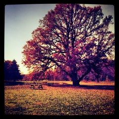 Photo taken at Purcell Park by Jessica N. on 10/25/2012