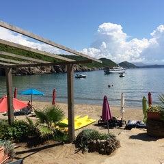 Photo taken at Sunj Lopud Beach by Debs on 9/7/2014