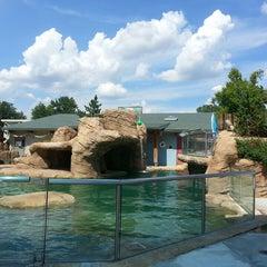 Photo taken at Tulsa Zoo by Kara M. on 7/21/2013