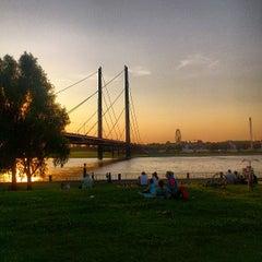 Photo taken at Rheinufer by Janett S. on 7/8/2013