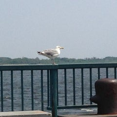 Photo taken at Canarsie Pier by Qasim G. on 7/19/2013