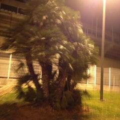 Photo taken at Estadio Municipal Castalia by Sergio M. on 1/31/2013