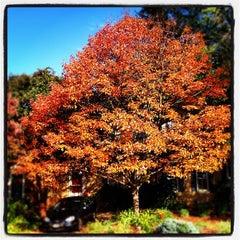 Photo taken at Clarendon by David M. on 10/14/2012