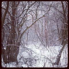 Photo taken at Downer Woods by JIAXI L. on 2/8/2013